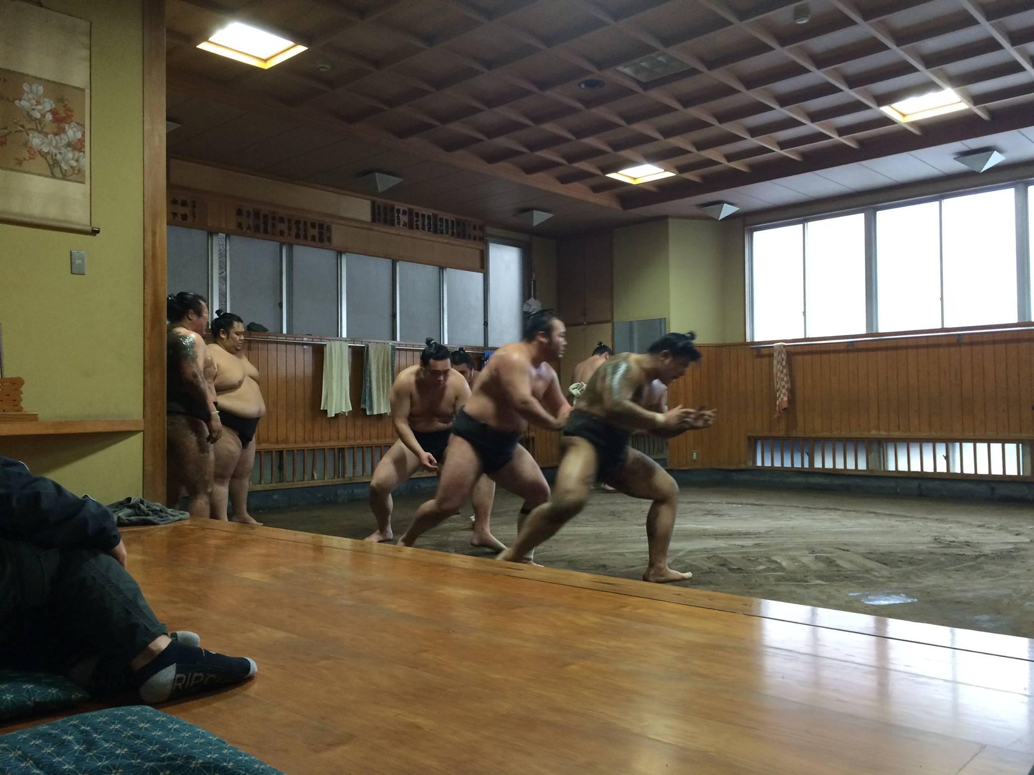 sumo wrestler morning training tokyo